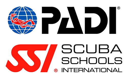 padi-ssi-logos